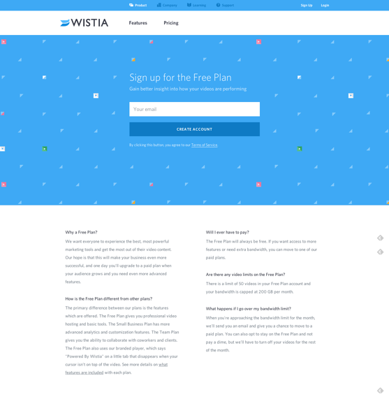 Wistiaのランディングページ例