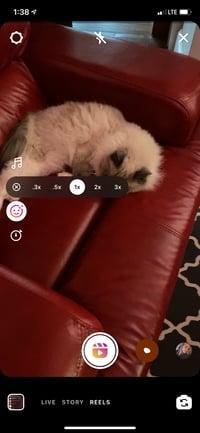 Instagramリールの再生速度ツール