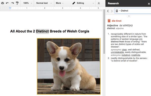 Googleドキュメントの辞書機能