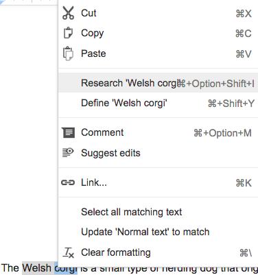 Googleドキュメントのサーチツール画像