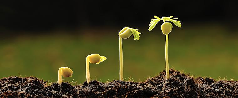 事業成長のためにCRMが必要な理由